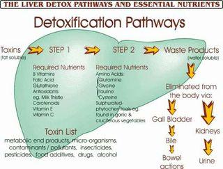 Liver-detox1