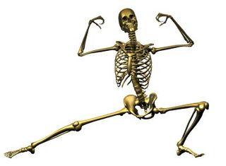 Exercise&bones